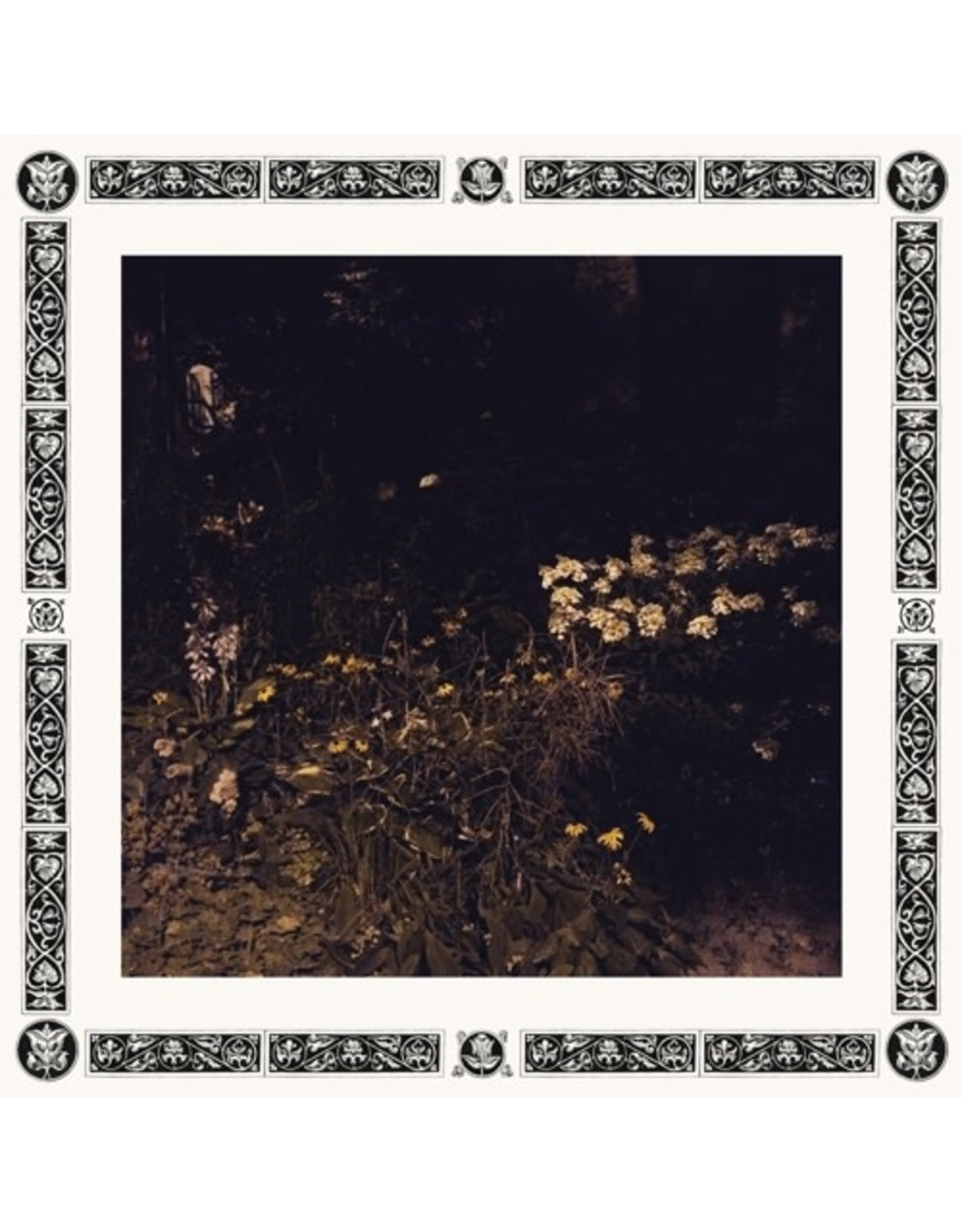 W25.ST Davachi, Sarah: Pale Bloom LP