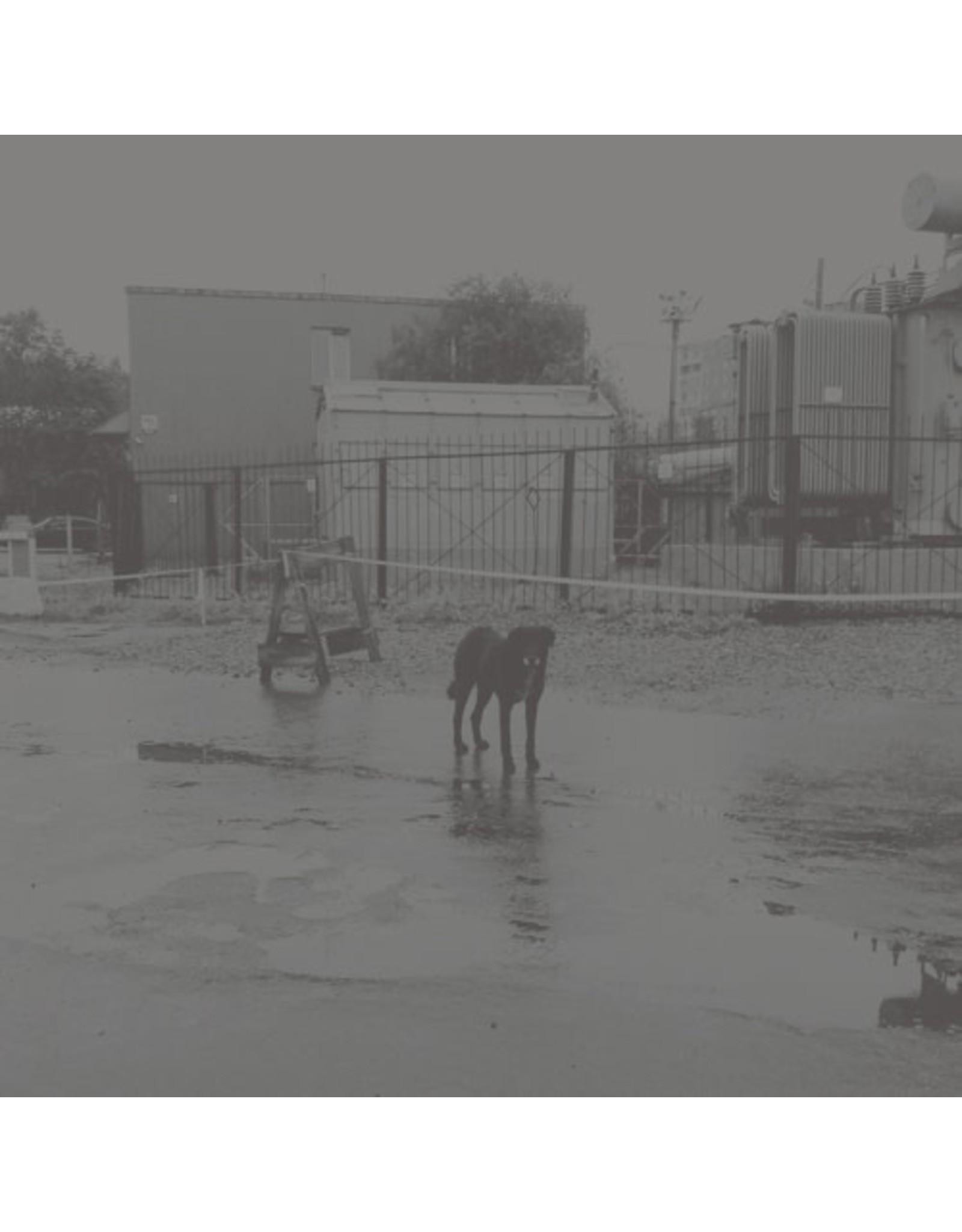 w.25th Nivhek: After Its Own Death / LP