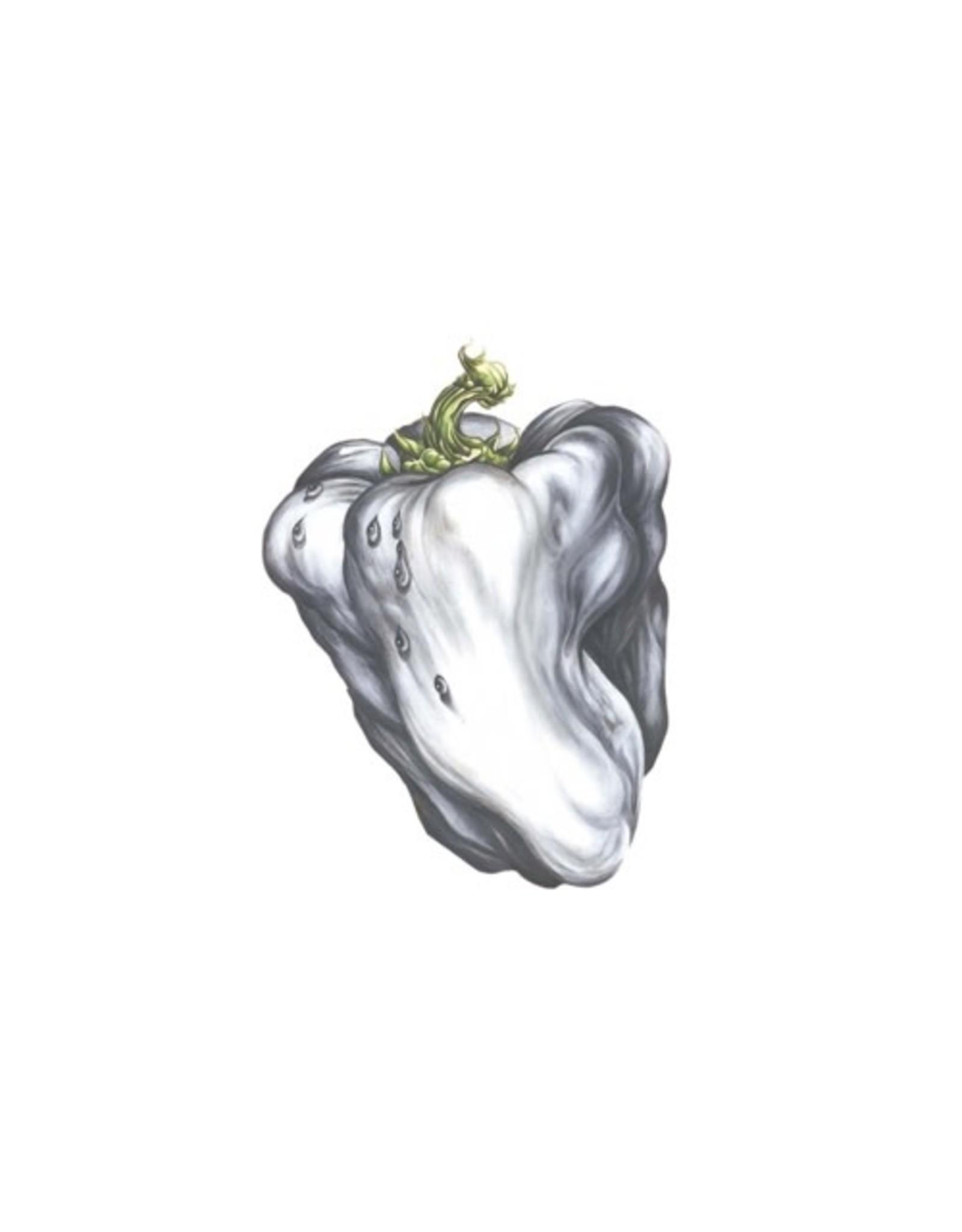 Plain Ween: White Pepper LP