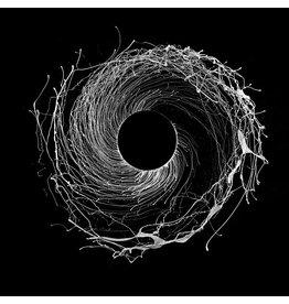 Erased Tapes Dawn of Midi: Dysnomia LP