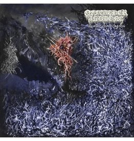 Profound Lore Of Feather And Bone: Sulfuric Disintegration LP