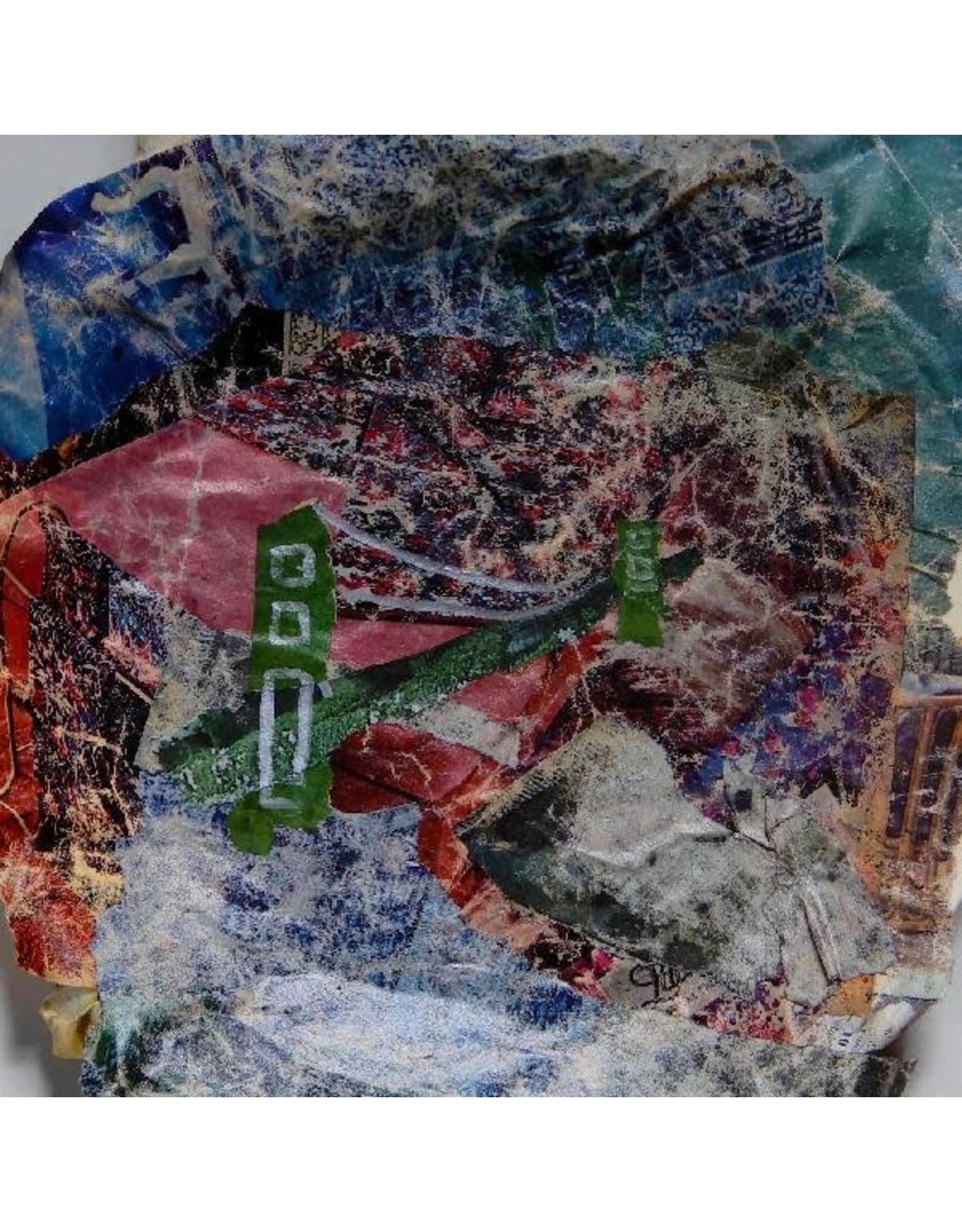 Domino Animal Collective: Bridge to Quiet LP