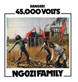 Now Again Ngozi Family: 45,000 Volts LP