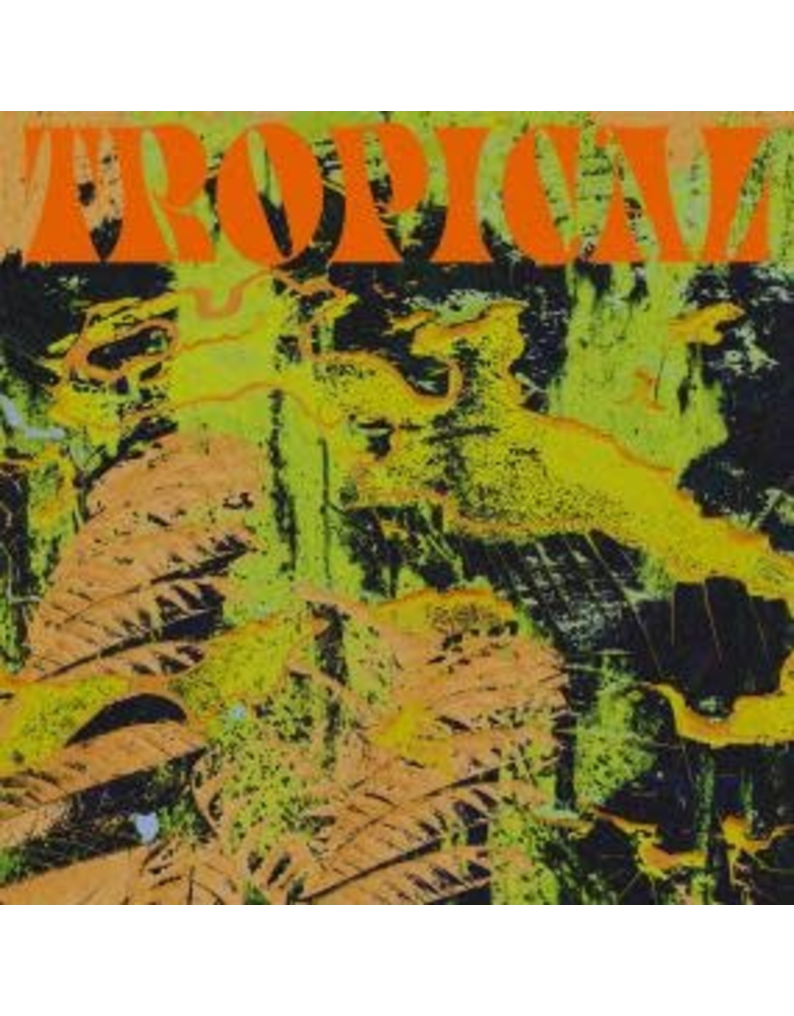 South of North CV Vision: Tropical LP