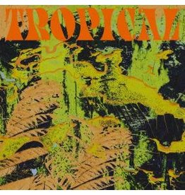 South of North CV Vision: Tropical LP