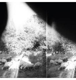 Constellation Godspeed You! Black Emperor: Asunder, Sweet And Other Distress LP