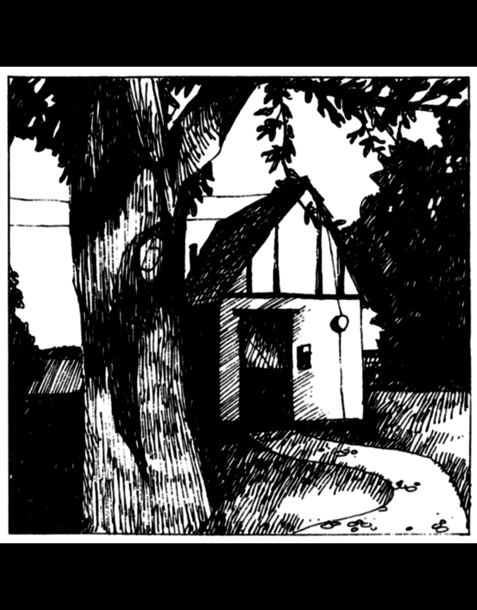 Mapache Lewis, Naomi: Cottage Songs LP