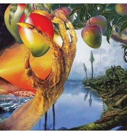 Aguirre Timelash: A Morphology of Wonders LP