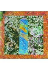 Merzbow: Rainbow Electronics LP