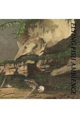 Hospital Rainforest Spiritual Enslavement: Flying Fish Ambience LP