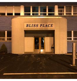 Full Bloom Brin & Josiah Steinbrick: Bliss Place LP