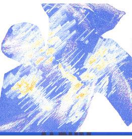 Telephone Explosion Album: s/t LP
