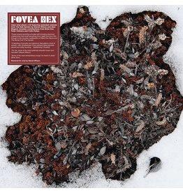 Les Disques du Crepuscule Fovea Hex: The Salt Garden (Landscaped) LP