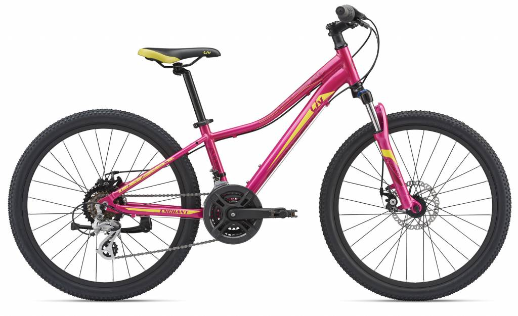 2019 Enchant 1 24 Disc