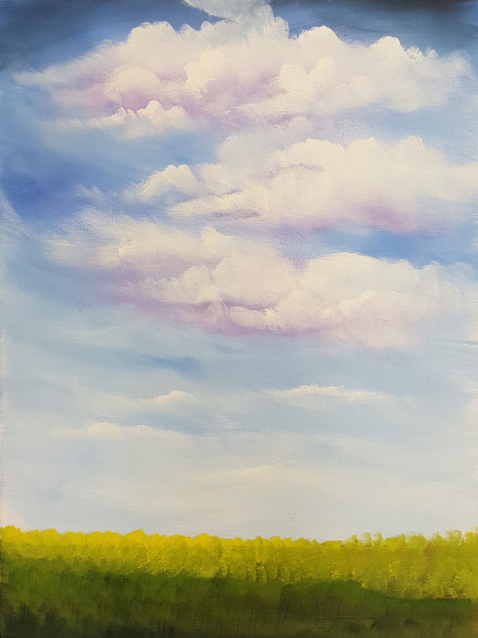 ART CLASS - CLOUD FILLED SKY IN ACRYLICS WITH JANET CARDINAL - MAY 14, 6-9PM