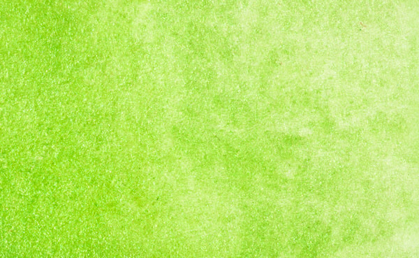 STONEGROUND WATERCOLOUR HALF PAN IVY GREEN
