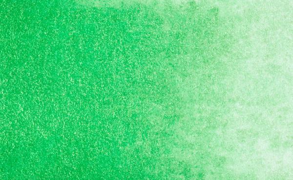 STONEGROUND STONEGROUND WATERCOLOUR HALF PAN SHAMROCK GREEN