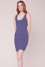 BB Dakota Summer Night City Striped Dress