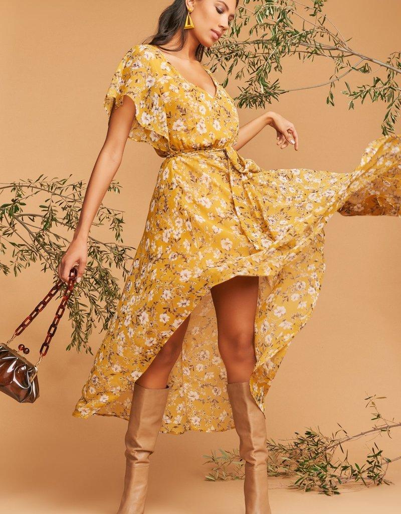 Show Me Your Mumu Paloma Flutter Dress