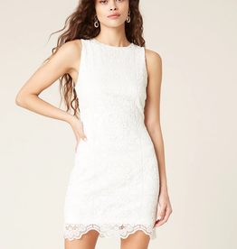 Jack by BB Dakota Ace Of Lace Bodycon Dress