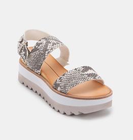 Dolce Vita Moxie Sandals