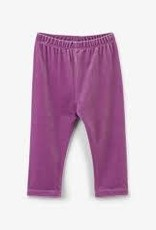 Hatley Hatley - Rose Velour Baby Leggings