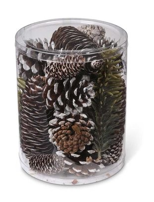 Cylinder of Assorted Pinecones