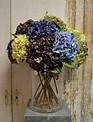 Natural Touch Garden Hydrangea (6 Colors)