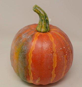 """8.5"""" Weighted Orange Striped Pumpkin"""