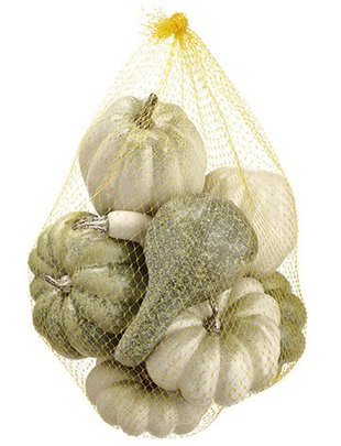 White Green Pumpkin Gourd Assortment Bag