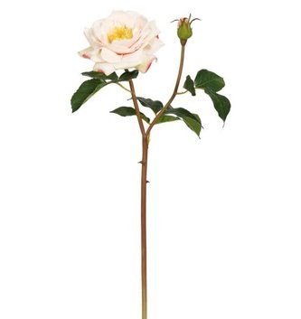 Light Pink Natural Touch Titania Rose