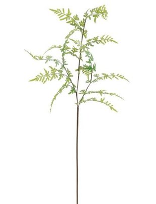 Venus Fern Branch Spray