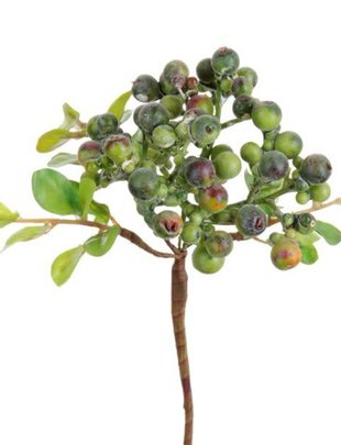 Mini Berry Leaf Pick