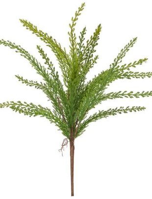 Seeded Feather Fern Spray