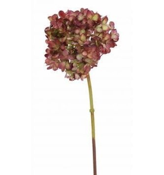 Rounded Petal Hydrangea (3 Colors)