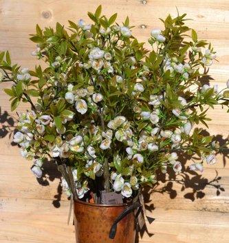 Plum Blossom & Foliage Spray (2 Colors)