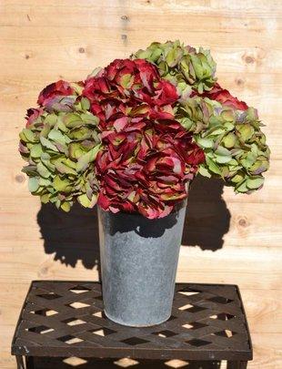 Large Hydrangea (2 Colors)