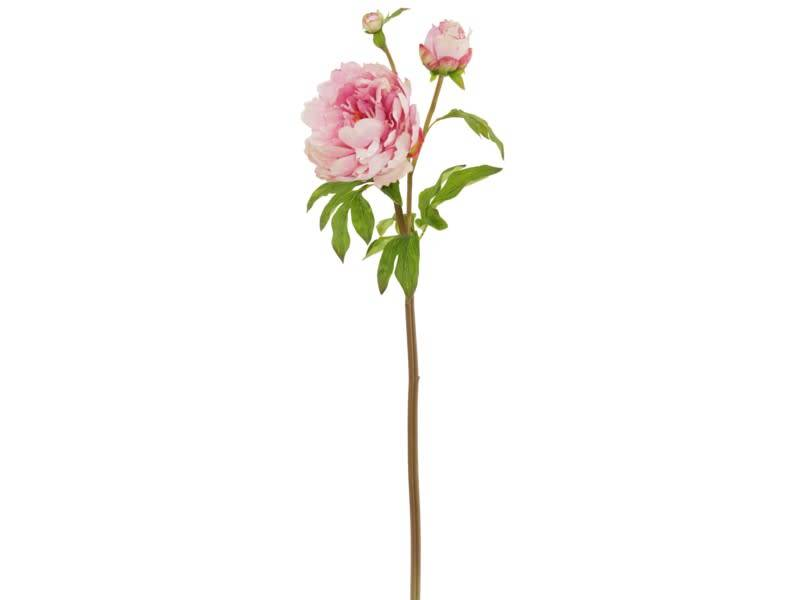 "29"" Natural Touch Peony Spray"