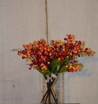Red Yellow Cranberry Pick