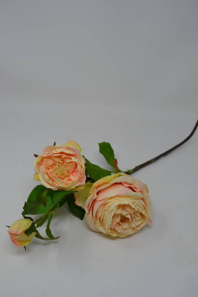 English Rose Spray with Bud