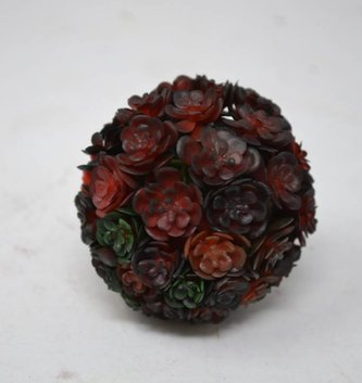 Crimson Chick Succulent Orb Small