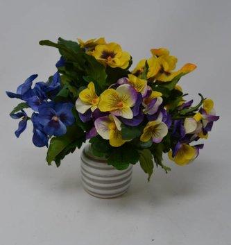 Garden Pansy Bush (3 Colors)
