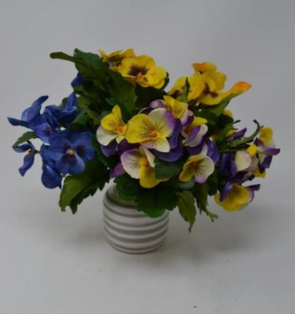Garden Pansy Bush (3 Colors)