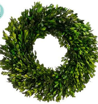 "17"" Preserved Boxwood Wreath"