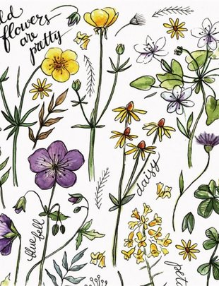 Wildflowers are Pretty Paper Napkins (2 Sizes)