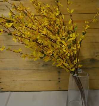 "38"" Yellow Forsythia Spray"