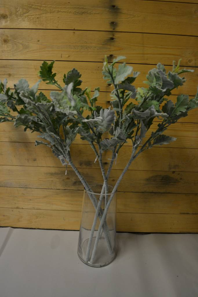 "28"" Dusty Miller Stem"
