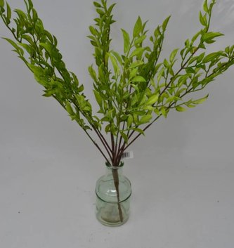 "15"" Nandina Leaf Bush"
