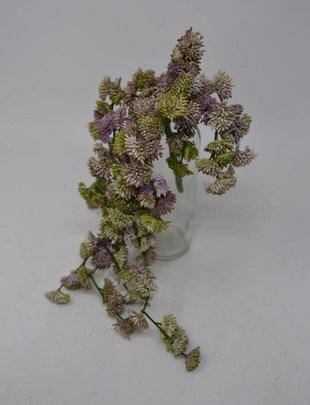Hanging Clover Succulent Pick