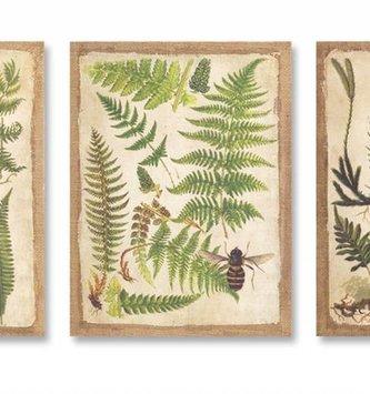 Burlap Fern Print Canvas (3 Styles)